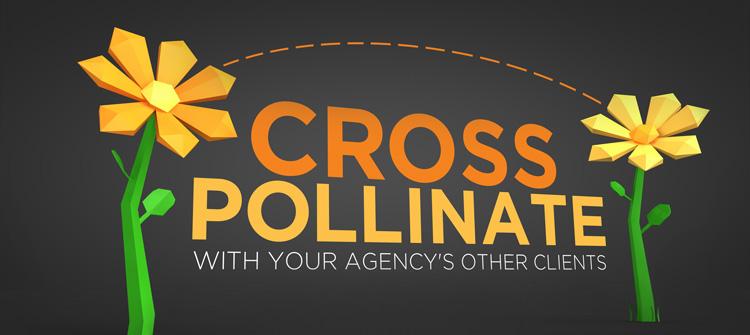 Cross-Polinate